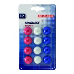 MGM012 Magnesy Memoboards 12 szt. 20 mm